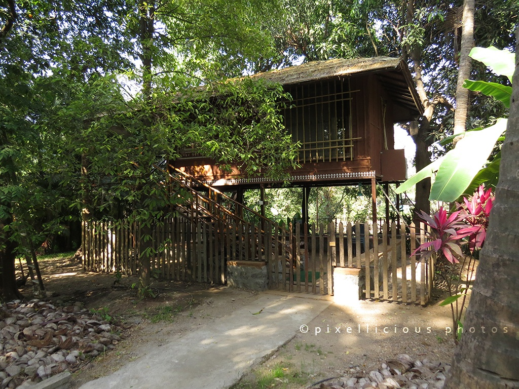 Machaan House at Save Farms - Tarpa