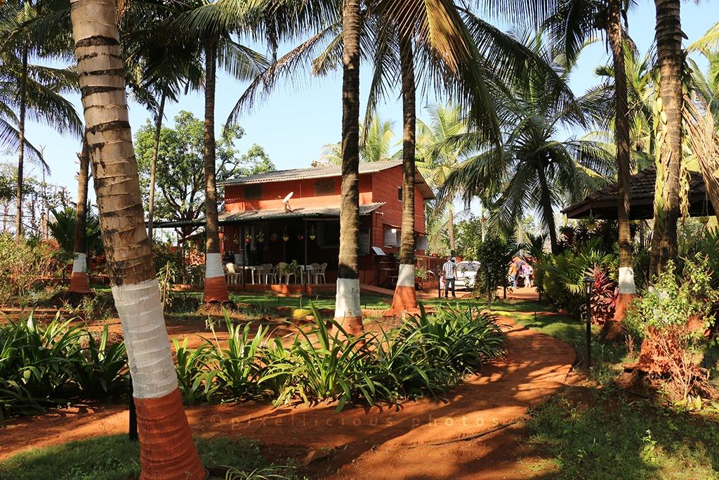 Majhya Mamacha Gaon | Agritourism