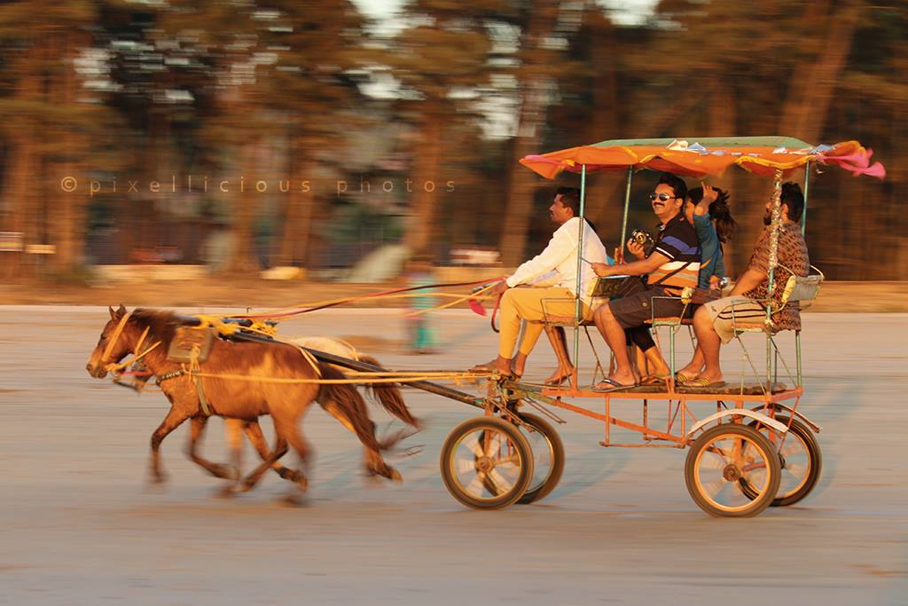 Panning Shot of a Horse Cart on Beach